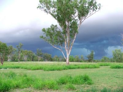 Chinchilla-Queensland-5
